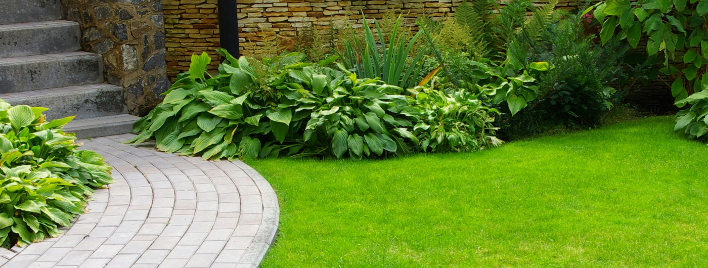 paving-and-turfing